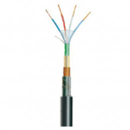 CABLE TELEREPORT ARME 2P06